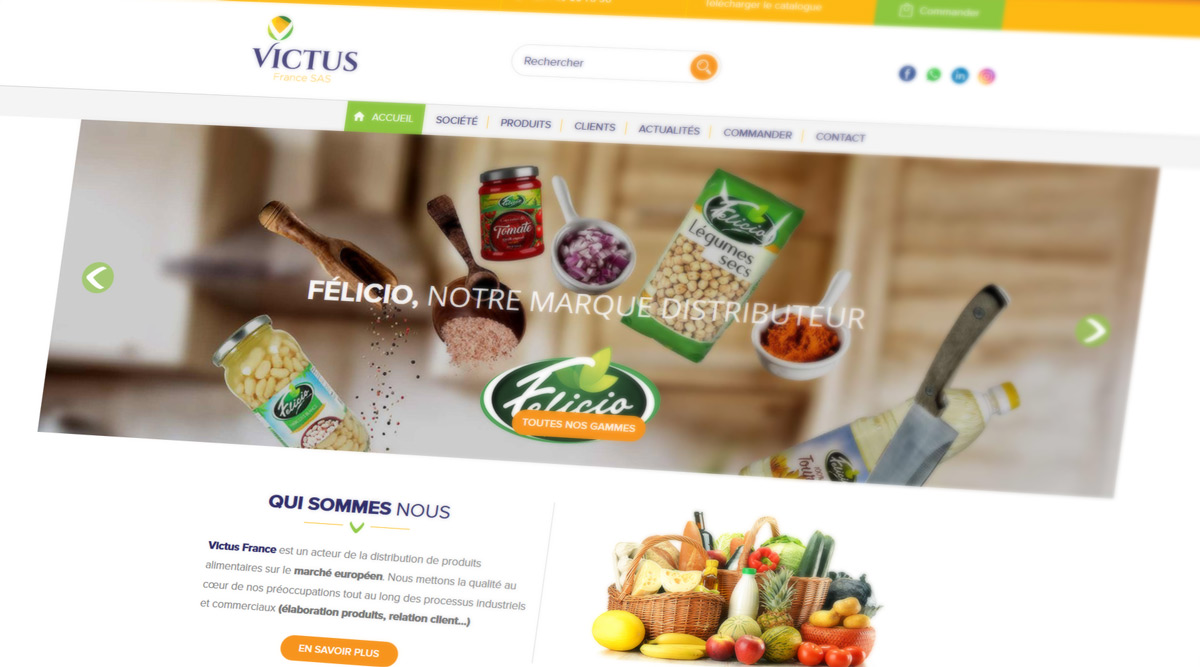 Site Web Victus France